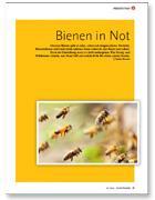 bienenInNot02