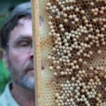 Besuch des FU Bienenstandes am 12. Juni 2014